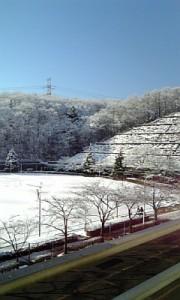 kotei_yuki1